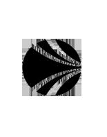 uk-club-nepia-logo